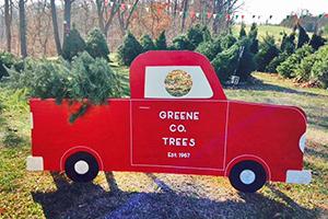 Greene County Trees